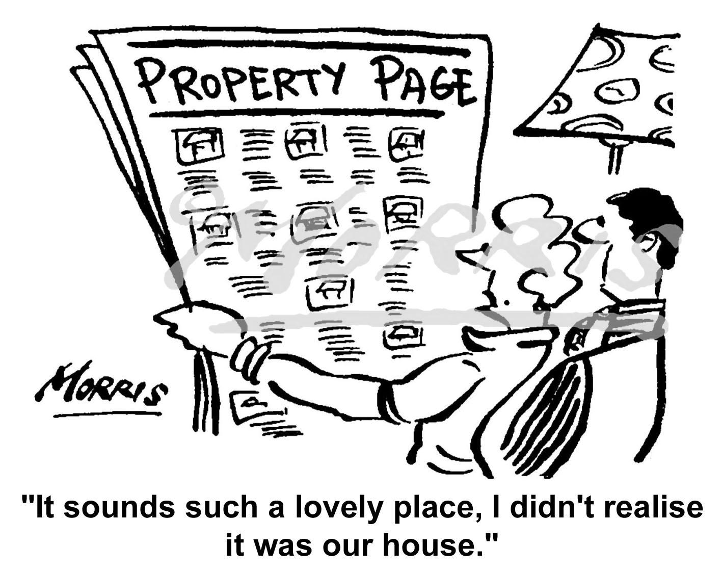 Estate Agent cartoon Ref: 0319bw