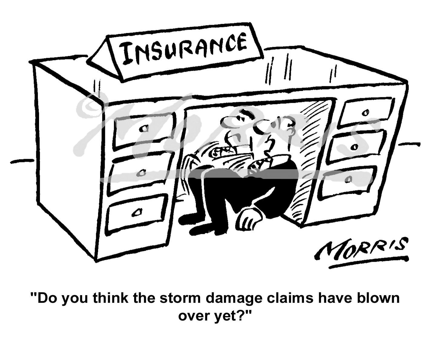 Insurance claim cartoon Ref: 1663bw