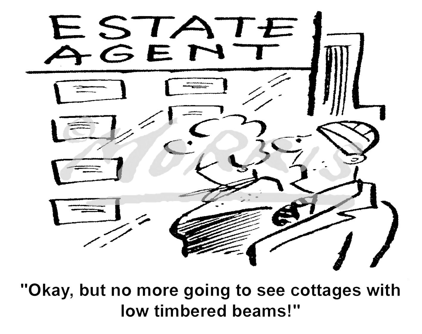 Estate agent property cartoon – Ref: 6052bw